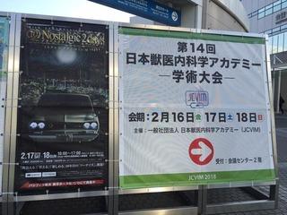 内科学アカデミー 1.jpg